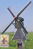 D32385 CARTE MAXIMUM CARD FD 2013 NETHERLANDS - MILL MOULIN HIEMERTER MOLEN BURGWERD - BOLSWARD CP ORIGINAL - Moulins