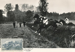 D32389 CARTE MAXIMUM CARD 1956 CZECHOSLOVAKIA - STEEPLE CHASE HORSES CP ORIGINAL - Horses