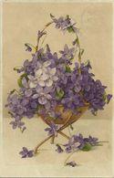 AK Blumen Veilchen Zum Fest Meißner & Buch Farblitho 1908 #09 - Fleurs