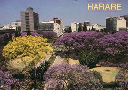 Zimbabwe - Harare - Zimbabwe