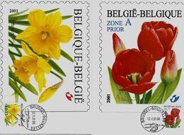 Belgie 3046/47  - Maximumkaart MB  - Bloemen  Type A. Buzin  - 2001 - 2001-2010