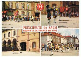 PRINCIPAUTE DE SALM  SENONES  LA RELEVE DE LA GARDE DE SALM MULTIVUES     ***    A    SAISIR ***** - Senones