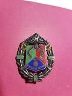 1er Régiment Etranger De Cavalerie (REC), Honneur, Fidélité, Dos Guilloché, Drago, Garanti Original, Port& Frais Compris - Insigne & Ordelinten