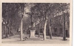 DOURGNE - La Promenade - - Dourgne