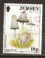 Jersey 1994 Champignon Mushroom Obl - Jersey