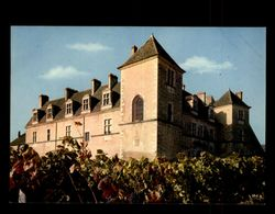 21 - VOUGEOT - Le Clos Vougeot - Chateau - France