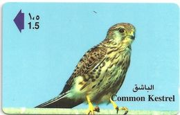 Oman - Common Kestrel - 47OMNT - 1999, Used - Oman