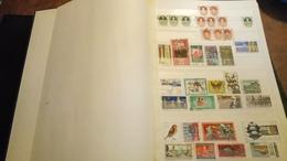 F0680 LOT FEUILLES STOCK DDR A TRIER BELLE COTE DÉPART 10€ - Stamps