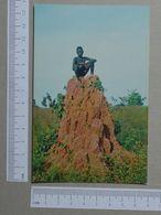 GUINÉ    - MONTE DE BAGA BAGA  -  BISSAU - 2 SCANS  - (Nº19973) - Guinea-Bissau