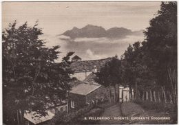 575  S PELLEGRINO IN ALPE RIDENTE SOGGIORNO 1954 CASTIGLIONE DI GARFAGNANA LUCCA FRASSINORO MODENA - Italia