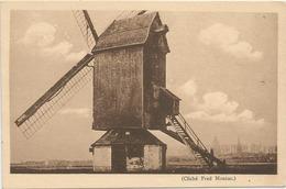 HOYMILLE MOULIN  PRES DE BERGUES - France
