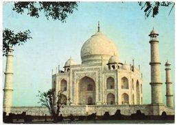 INDIA - CLOSE UP VIEW OF TAJ  MAHAHAL AT SUNRISE - AGRA / ISLAM - India