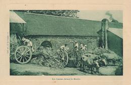 Martinique - Les Cannes Devant Le Moulin - Coll. Art., C. Le Camus - 3, (Sugar Cane, Ox Carts) - Martinique