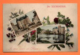 77 NEMOURS  VOYAGEE 1906 Carte N° 44937 - Nemours