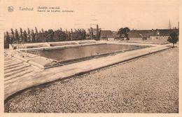 Turnhout : Zwemdok / Bassin 1951 - Turnhout