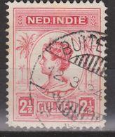 Nederlands Indie Netherlands Indies Dutch Indies 134 Cancel BUITENZORG ; Koningin, Queen, Reine, Reina Wilhelmina 1913 - Niederländisch-Indien