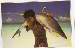 Maldives Requin A Pointe Blanche (LOT MA) - Maldives
