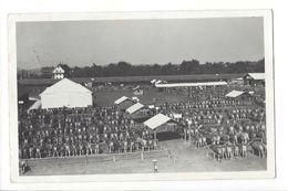 19189 - Foire Au Bétail Vaches Carte Photo Eugen Grau Zug Baar - Altri