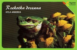 Voyo POLAND Protected Animals EUROPEAN TREE FROG Rzekotka - Hyla Arborea  - Used Phone Card 2002 # 1355 - Polen