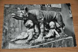 1372- Siena, La Lupa - 1955 - Arts