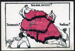 1920. Cca. Irredenta, Propaganda Képeslap  /  Ca 1920 Irredenta, Propaganda Vintage Picture Postcard - Hongrie