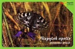 Voyo POLAND Protected Animals APOLLO BUTTERFLY Niepylak Apollo - Parnassius Apollo  - Used Phone Card 2002 # 1352 - Polen