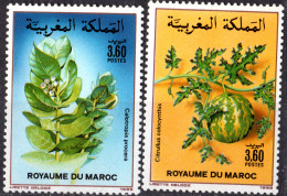 MAROC - Fleurs 1988 - Morocco (1956-...)