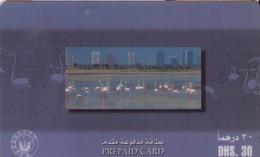 TARJETA TELEFONICA DE EMIRATOS ARABES UNIDOS. PREPAGO. (110). FAUNA. - Emiratos Arábes Unidos
