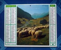 CALENDRIER Dpt 66 - Almanach Des P.T.T 1984 -  VALLEE D'OSSAU - Big : 1981-90