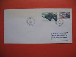 TAAF Lettre Martin De Vivies - St Paul -AMS   Pour La France N° 88 Et 89  Du 13/1/1981 - Briefe U. Dokumente