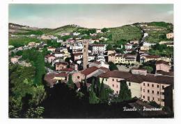 FIESOLE ( FI ) PANORAMA NV FG - Firenze