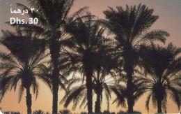 TARJETA TELEFONICA DE EMIRATOS ARABES UNIDOS. PREPAGO. (155). - Emiratos Arábes Unidos