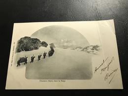 221 - Chasseurs Alpins Dans La Neige - - Chartreuse