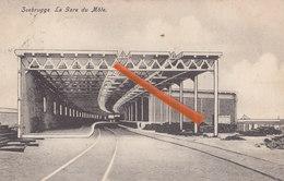 ZEEBRUGGE - La Gare Du Môle - Zeebrugge