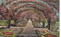 Washington Tacoma Rose Arbor In Point Defiance Park 1924 Curteic