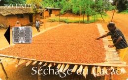 *CAMERUN* -  Scheda Usata - Cameroon