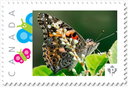NEW!  BUTTERFLY Side View Unique Picture Postage Stamp MNH Canada 2018 P18-01sn15 - Butterflies