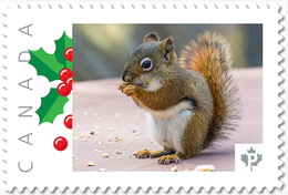 NEW!  SQUIRREL  - Unique Picture Postage Stamp MNH Canada 2018 P18-01sn20 - Knaagdieren