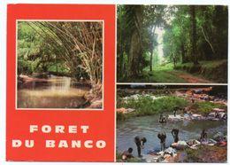 COTE D'IVOIRE - FORET DU BANCO / LESSIVE DANS LA RIVIERE - Costa D'Avorio