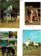 CHEVAUX - ÂNES  /  Lot De 90 Cartes Postales Modernes écrites - Cartes Postales
