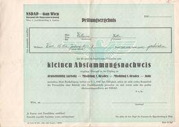 0808     NSDAP  PRÜFUNGSERGEBNIS  ARISCH    KLEINEN  ABSTAMMUNGSNACHWEIS - Documents