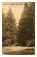 CPA - Carte Postale  - Belgique - Camps De Beverloo - 1922 (CP200) - Beringen