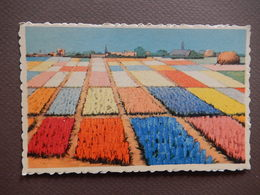 CPA - RARE - STUNNING VINTAGE CARD - PICTURE OF TULIP FIELDS - R11272 - Bloemen