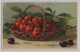 Catharina Klein - Kirschen Cherries Cerises Ciliegie - Serie 1902 - Klein, Catharina
