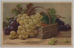 Catharina Klein - Trauben Raisin Uva Grapes - Serie 1737 - Klein, Catharina