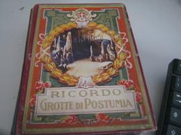 ALBUM RICORDO GROTTE DI POSTUMIA - Dépliants Touristiques