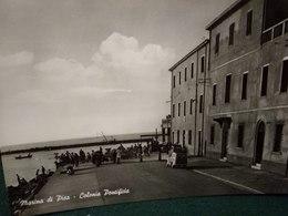 Cartolina Maccna Di Pisa Colonia Pontificia Non Viaggiata Anni 60 Auto Fiat Topolino Giardinetta - Pisa