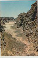 Oued Asséché Dans Le Tassili Des Ajjers - Sahara - Altri