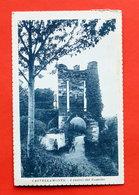 Cartolina Castellamonte - I Ruderi Del Castello - 1921 - Italia