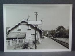 Gare De Eu La Mouillette - Trains